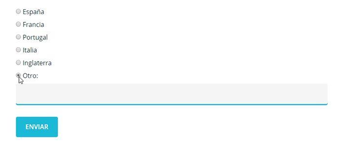 Formulario donde únicamente puedes escribir si has elegido la opción Otros