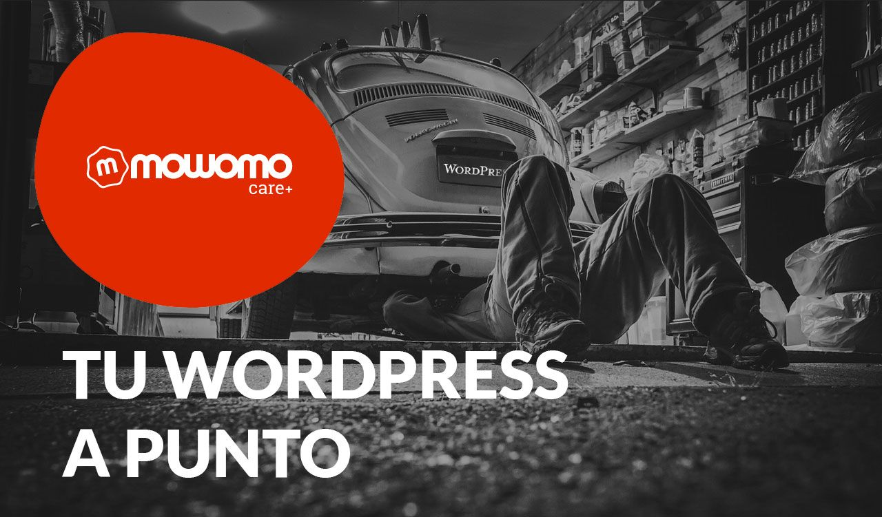 mowomo care, mantenimiento WordPress especializado.